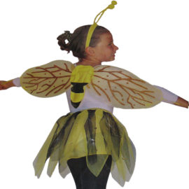 carnevale-ape-maia